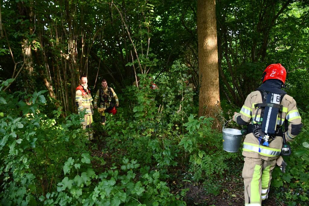 Brandweer blust brandende boom met emmers water