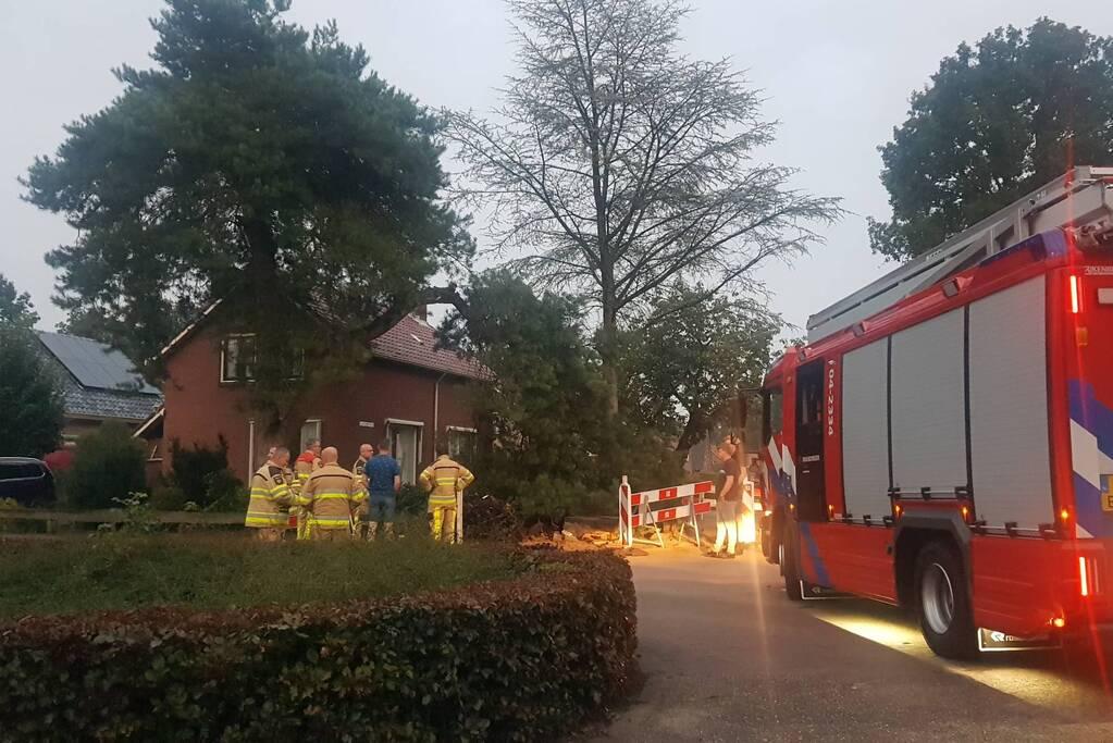 Brandweer verwijdert grote tak uit boom