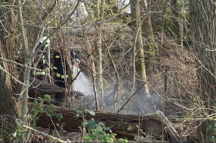 Bosschage langs rivier de Lek in brand