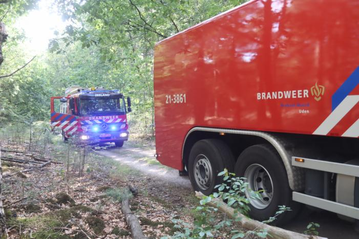 Flink stuk bos in brand