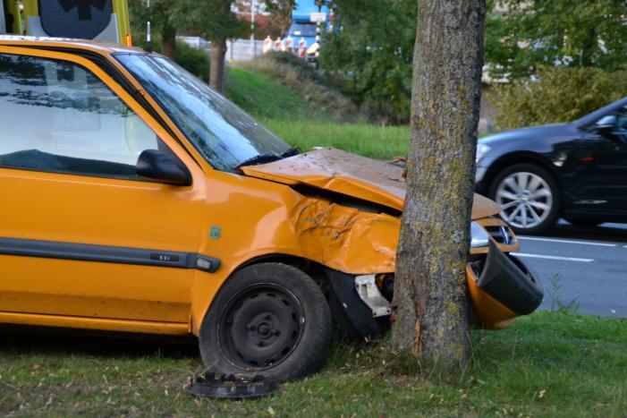 Twee personen gewond na botsing tegen boom