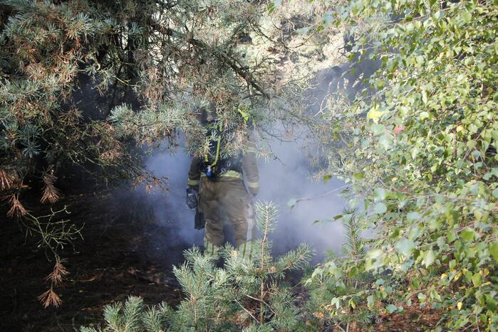 Brand in bosgebied snel geblust