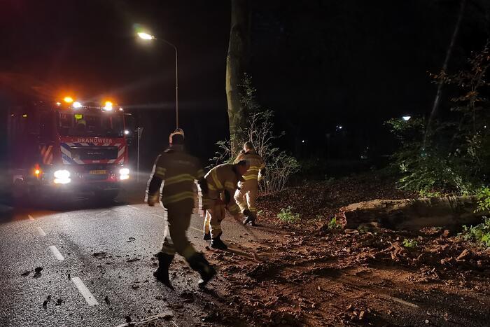 Brandweer verwijdert verrotte boom van de weg