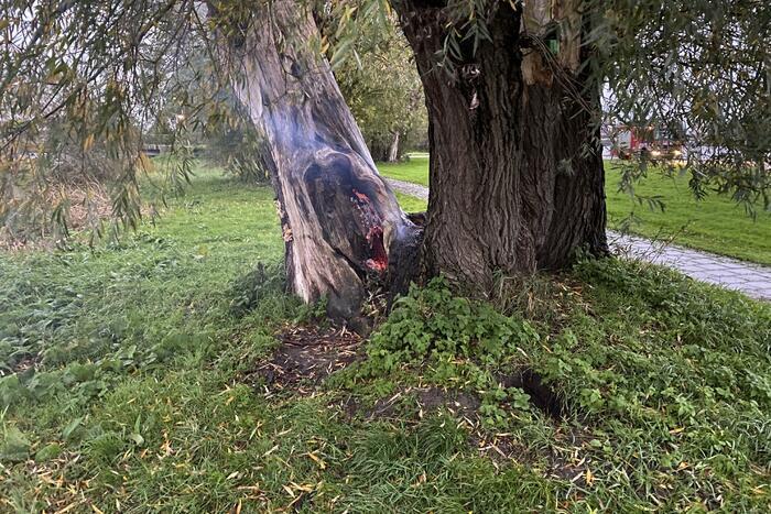 Brandweer blust brand in boom met emmer