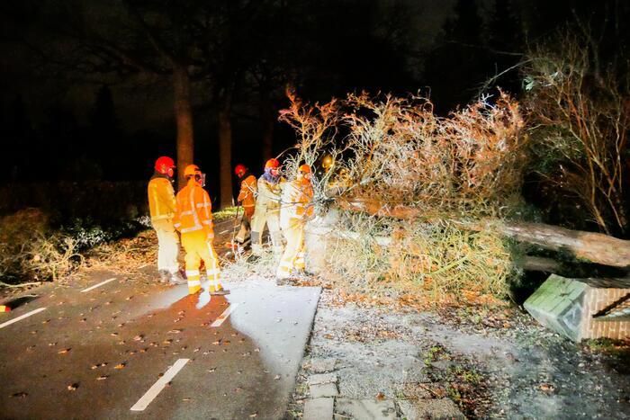 Omgewaaide boom blokkeert doorgaande weg