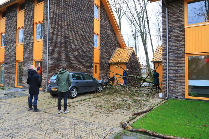 Boom waait om en beschadigt woningen, fietsen en auto