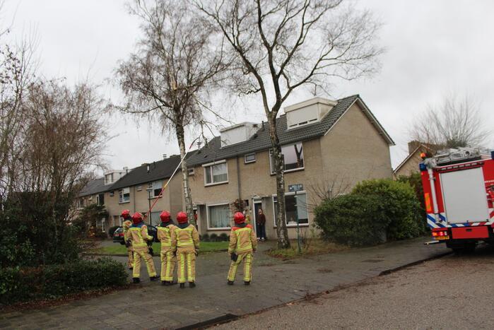 Brandweer zaagt loshangende tak uit boom