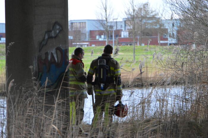 Riet in brand