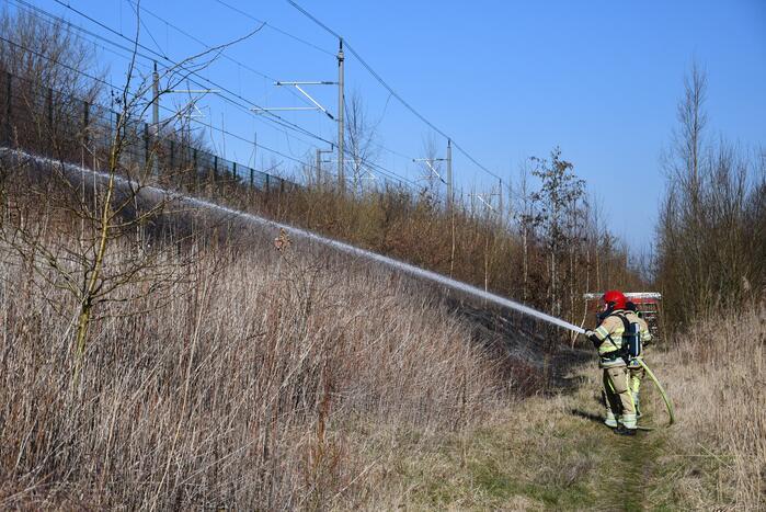 Enorm stuk riet langs spoor in brand