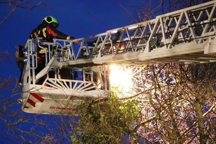 Brandweer zet boom vast met spanbanden