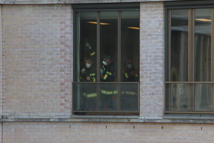 Meerkoet vast tussen raam en balustrade