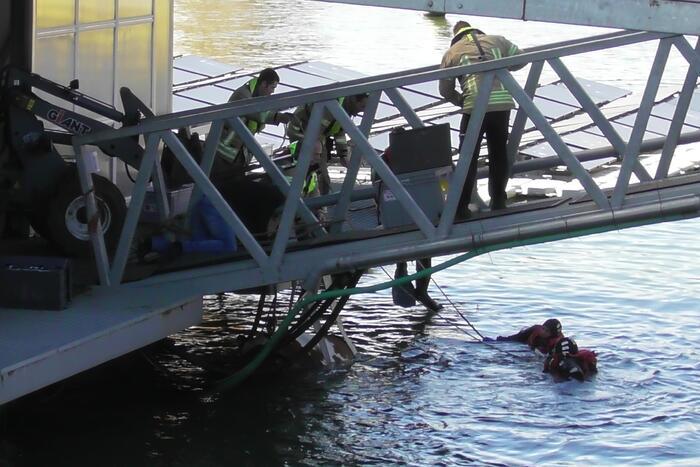 Koe belandt in water Floating Farm
