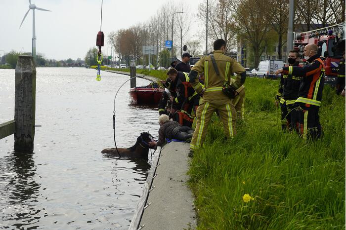 Brandweer heeft handen vol door reddingsactie