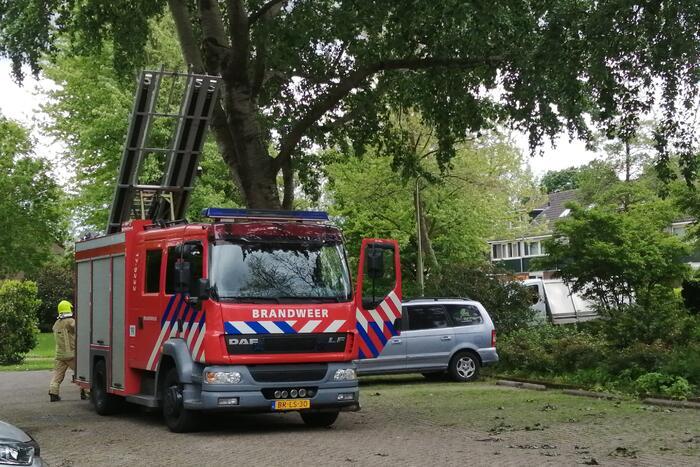 Brandweer haalt loshangende tak uit boom