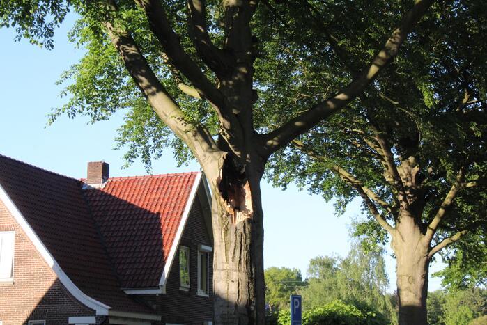 Gevaarlijk hangende tak verwijderd