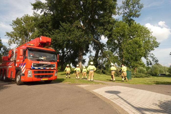 Brandweer zaagt afgebroken tak in stukken