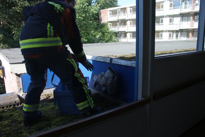 Meeuw gered door brandweer