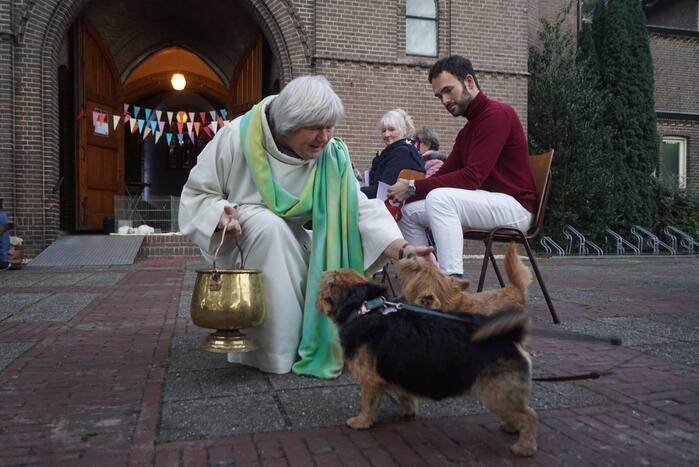 Huisdieren krijgen zegening op Dierendag